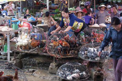 Marché vietnamien aujourd'hui