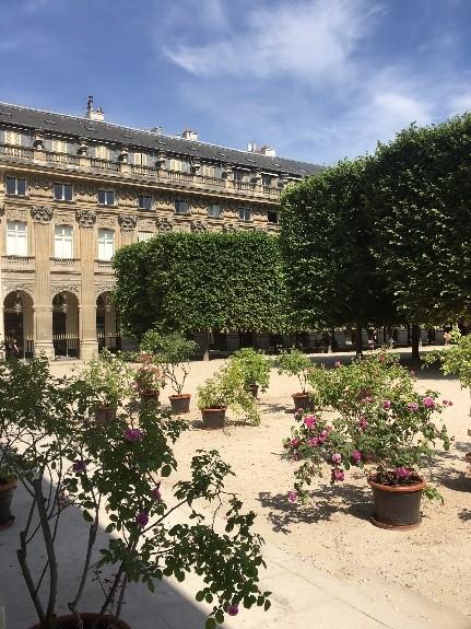 Rosiers au Palais Royal