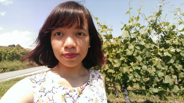 Yen dans les vignes