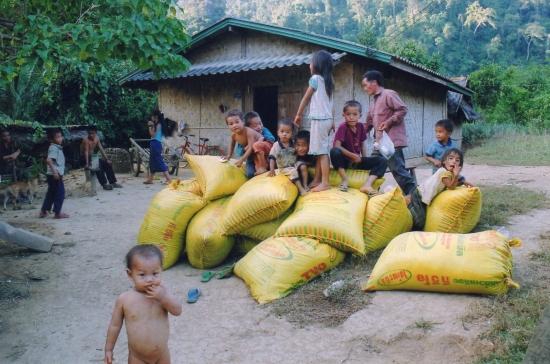 Laos - Au village hmong