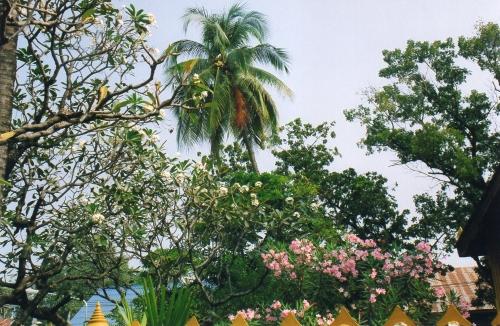 Laos - Petit coin de paradis