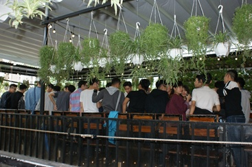 Dans le même restaurant, un groupe de garçons assurent l'ambiance sonore! Et si le cadeau offert aux femmes était le calme. Chiche !