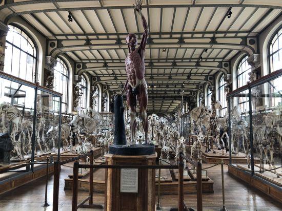 Au Museum