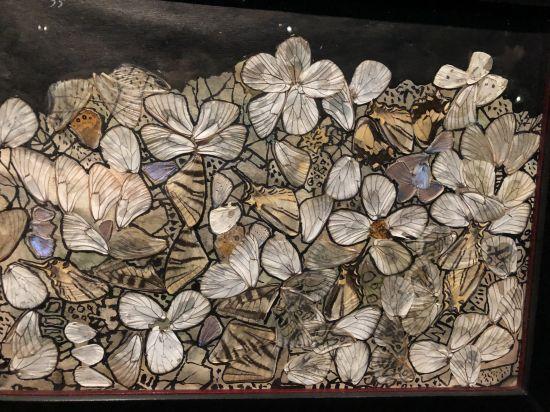 Collage d'ailes de papillons – Jean Dubuffet dans l'exposition au Musée des arts décoratifs