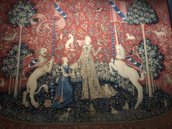 Tapisserie de la Dame à la Licorne - La Vue