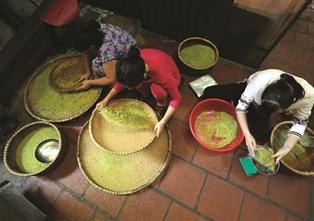 L'automne est la saison du côm à Hanoï!